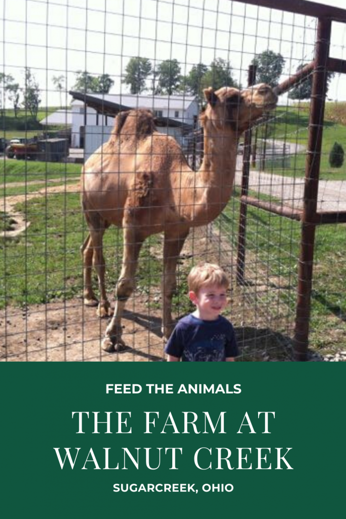 The Farm at Walnut Creek