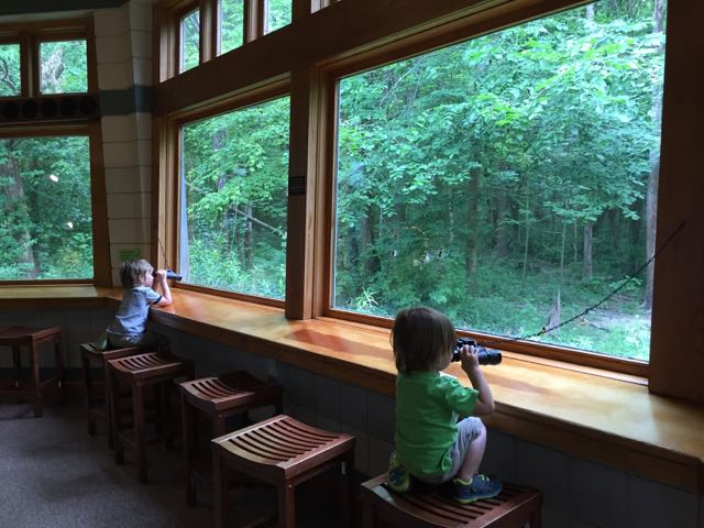two boys birdwatching at the Nature Center