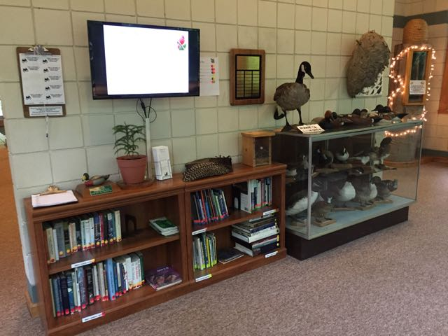 books and mounted birds inside the Nature Center