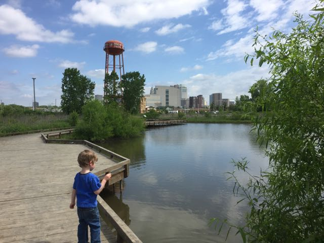boy on the boardwalk at scioto audubon