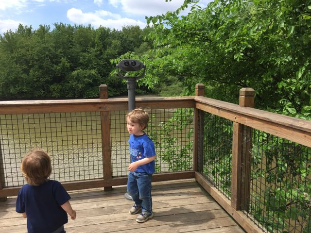 boys looking at the scioto river