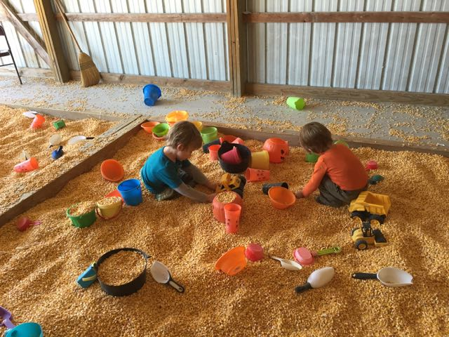 boys playing in corn bin at Jaquemin Farm in Plain City, Ohio
