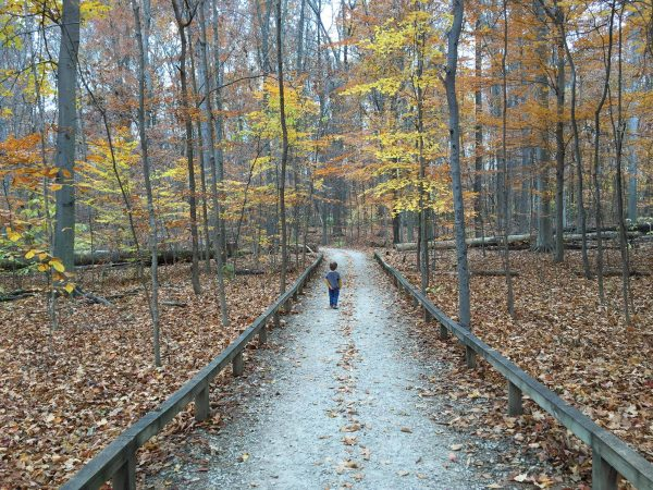 boy walking at Inniswood Metro Park in Columbus, Ohio
