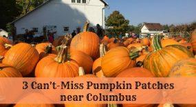 3 Can't-Miss Pumpkin Patches near Columbus