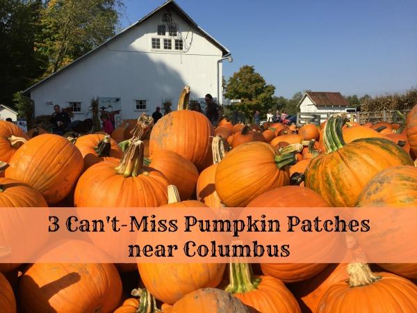 3 Cant Miss Pumpkin Patches Near Columbus