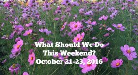 What Should We Do This Weekend? October 21-23, 2016