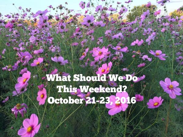 wildflowers-hilliard-weekend