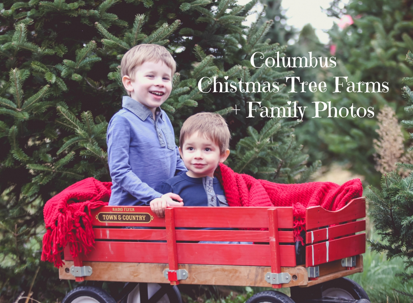 2 Columbus Christmas Tree Farms Family Photos