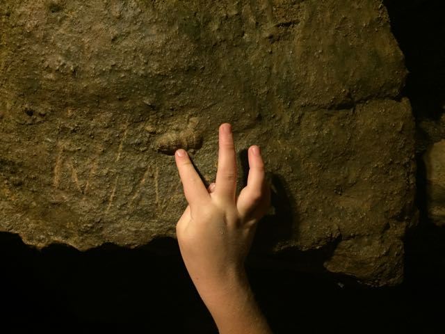 a kid pointing to a fossil in the caves