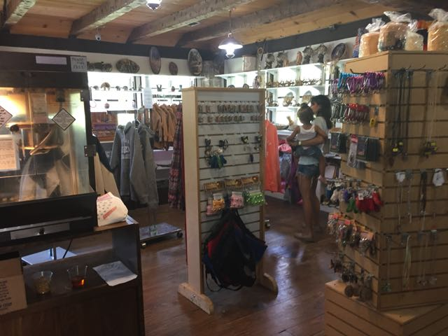 inside view of the gift shop at Olentangy Indian Caverns