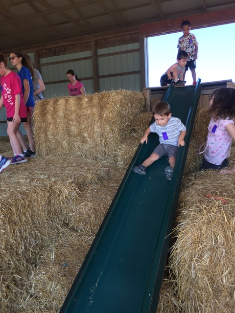 Leeds Farm Slide