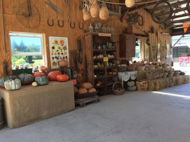 Leeds Farm pumpkin barn