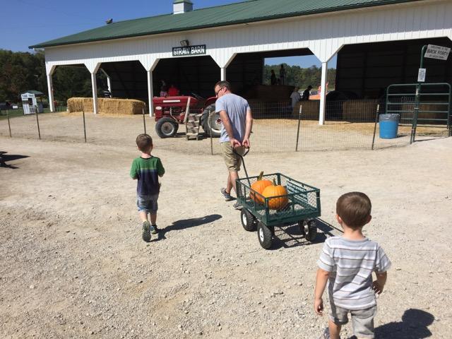 Leeds Farm pumpkin picking