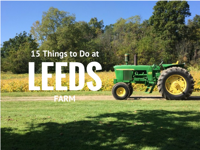 15 things to do at leeds farm