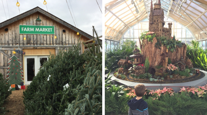 Christmas Trees and Franklin Park Conservatory Train