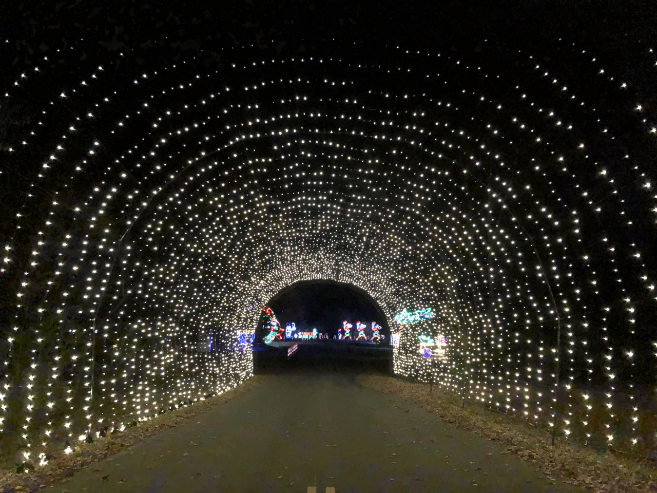 drive thru at Butch Bando's Fantasy of Lights