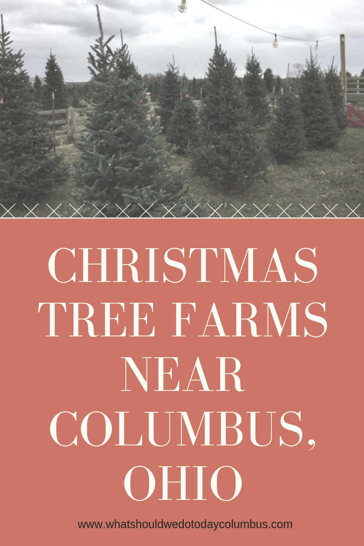 Christmas Tree Farms near Columbus Ohio