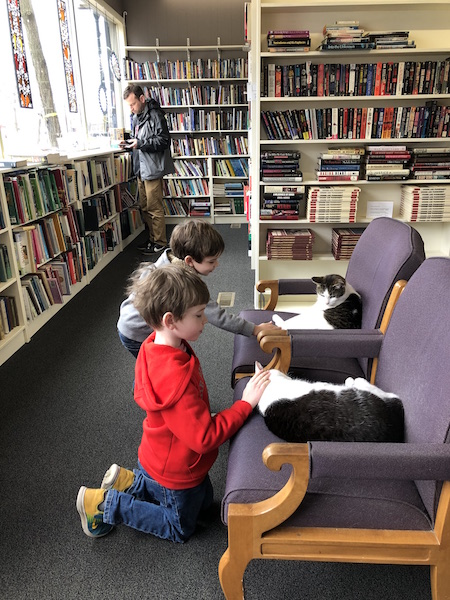 kids petting cats at Paperback Exchange in Lancaster, Ohio
