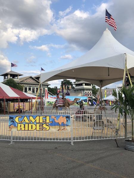 Camel Rides at the Ohio State Fair, Columbus, Ohio