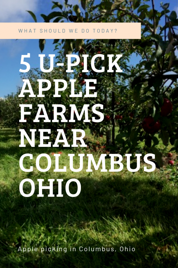 5 U Pick Apple Farms Near Columbus Ohio