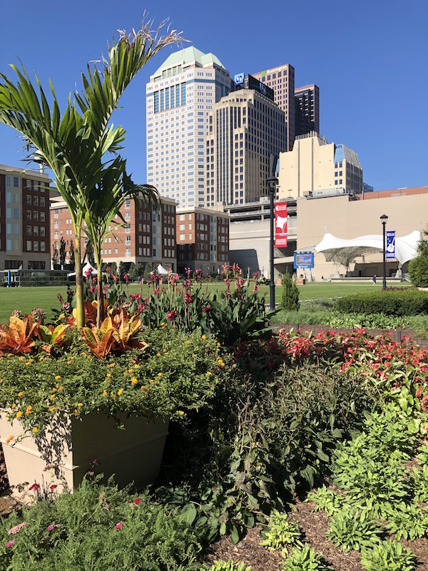 Plants and flowers at Columbus Commons