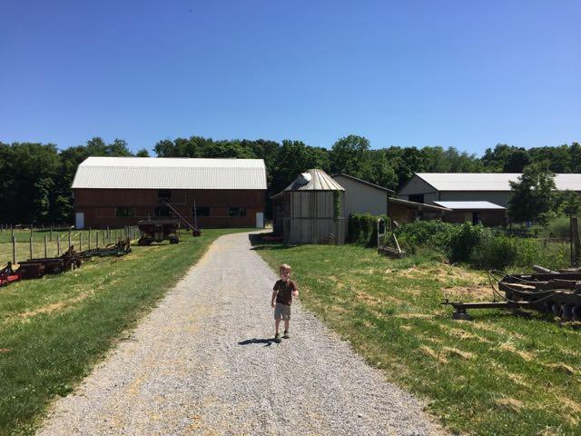 boy walking down a gravel path at Stratford Ecological Center