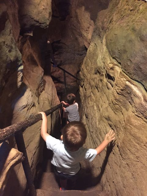 kids going down steps at Olentangy Indian Caverns