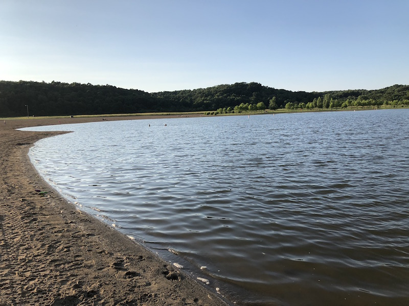 shoreline at Salt Fork State Park Beach