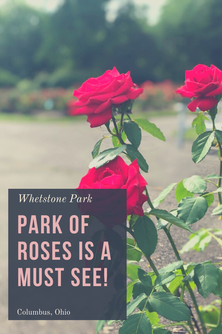 Whetstone Park Park of Roses is a Must See Destination in Columbus!