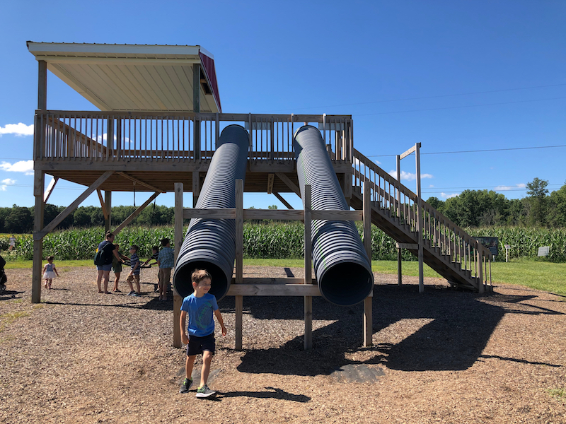 slides and play structure at Hendren Farm Market