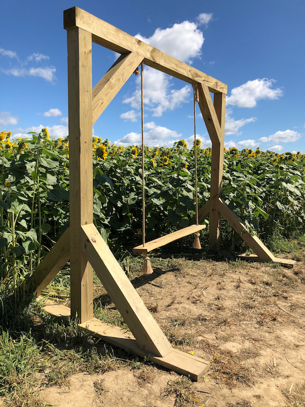 a wooden swing in the sunflower field for photos