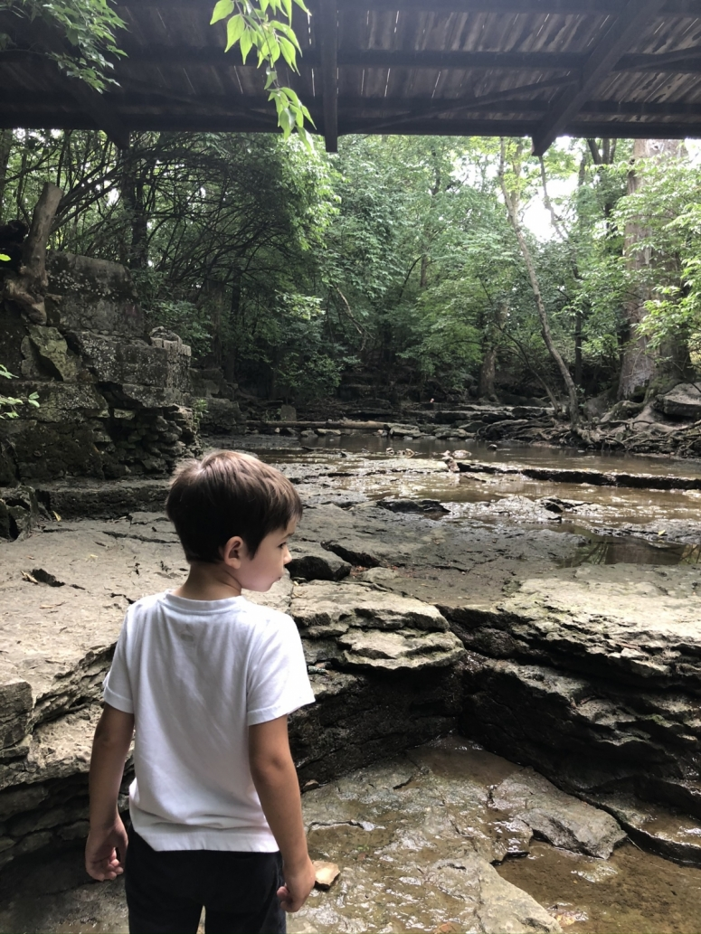 boy looking at the creek at Indian Run Falls in Dublin