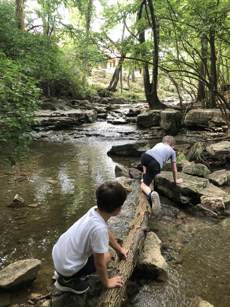 boys climbing across a log over the creek