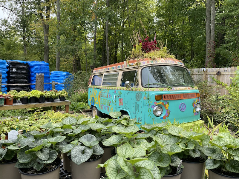 VW Bus and other plants at Groovy Plants Ranch