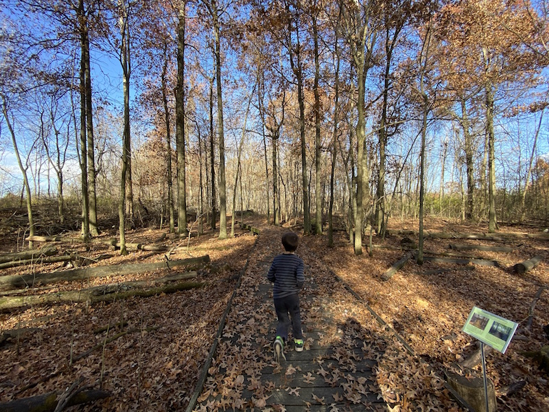 boy walking the path in the Sawmill Wetlands Education Area