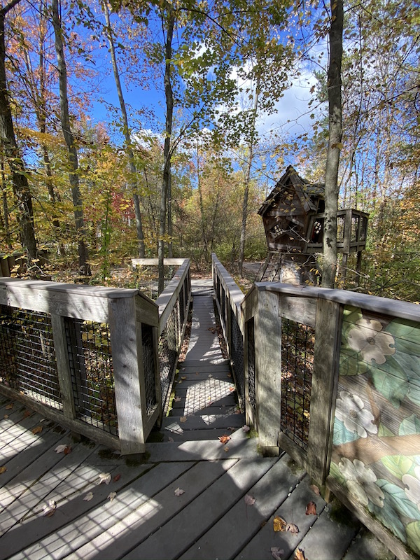 the swinging bridge near the treehouse at Inniswood