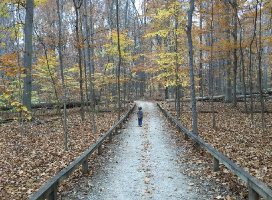 a boy on the Boardwalk Trail in Inniswood Metro Park