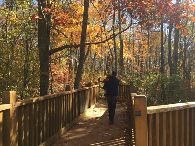 boy and dad walking on a boardwalk in Battelle Darby Creek Metro Park