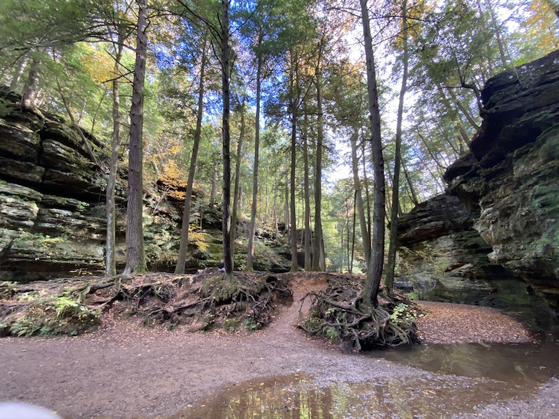 trees and rock formations in Old Man's Cave