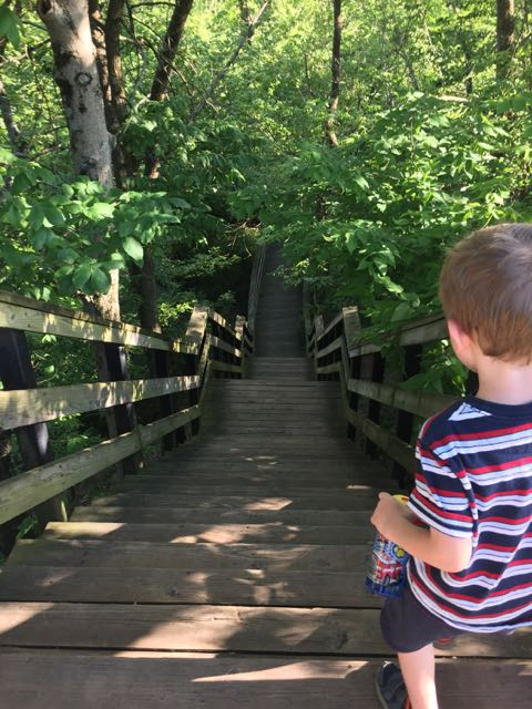 boy going down the steps to the waterfall at Hayden Falls Park in Dublin, Ohio