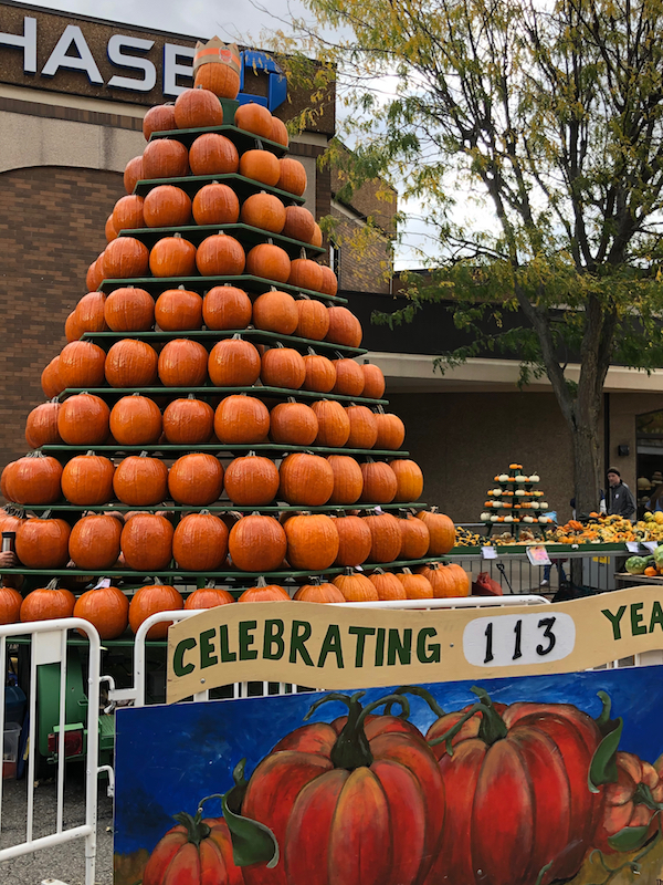 a large pyramid of pumpkins at the Circleville Pumpkin Show in Ohio.