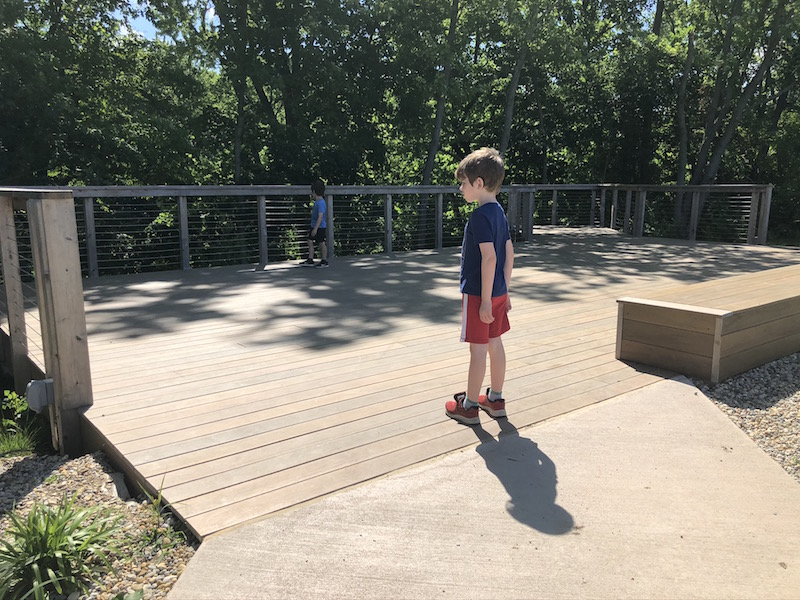 two boys looking over the observation deck at Grove Lodge.