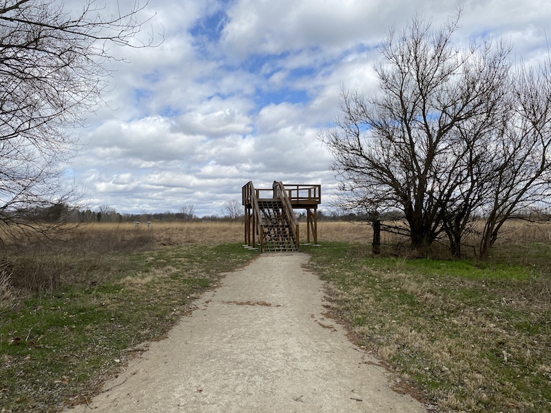 observation deck at the Wood Duck Picnic Area at Pickerington Ponds Metro Park.