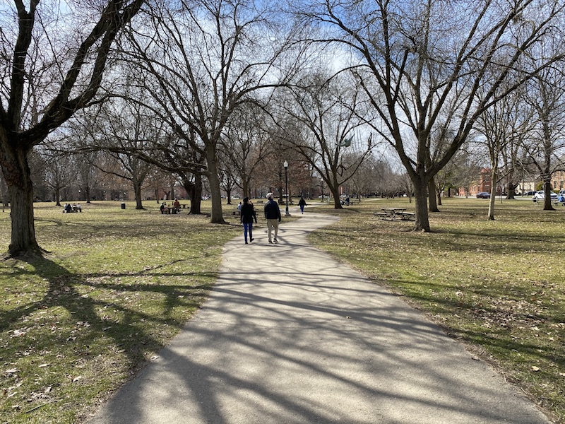 people walking on a path and sitting at picnic tables in the park.
