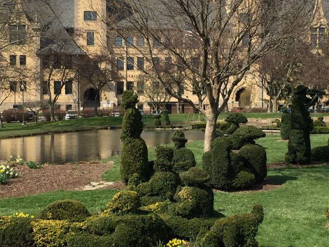 a close up view of the topiaries in the park.