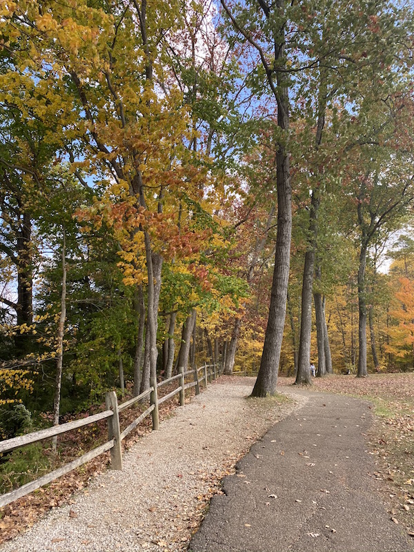Clearfork Gorge Area at Mohican State Park.