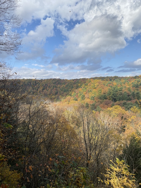 view of fall foliage from Clear Fork Gorge in Mohican State Park.