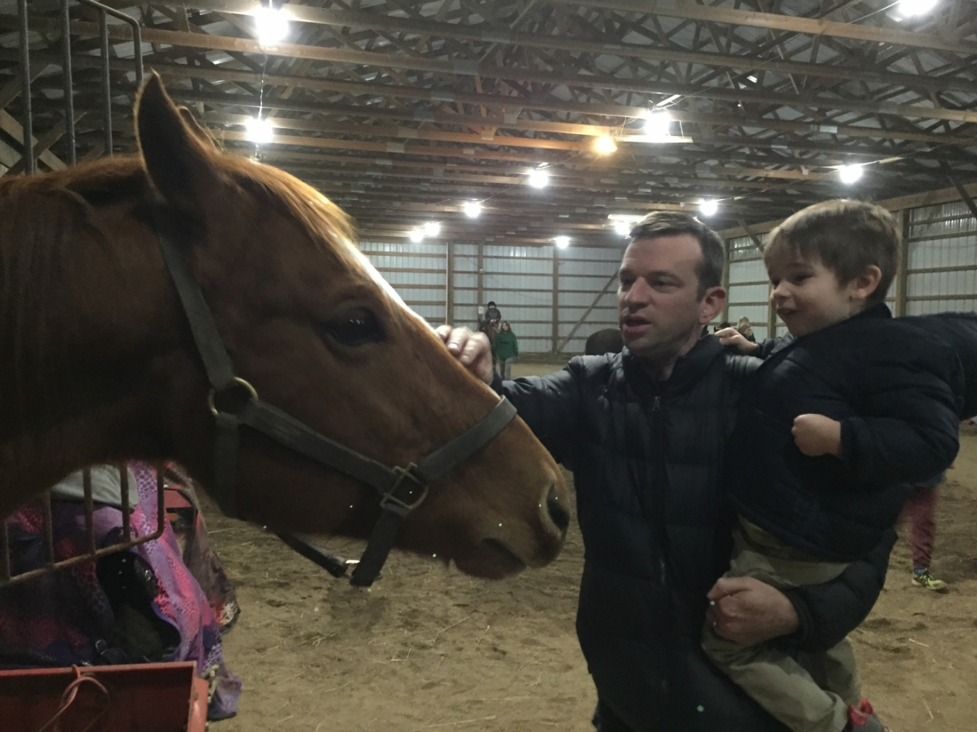 boy and dad petting a horse in Galloway, Ohio.