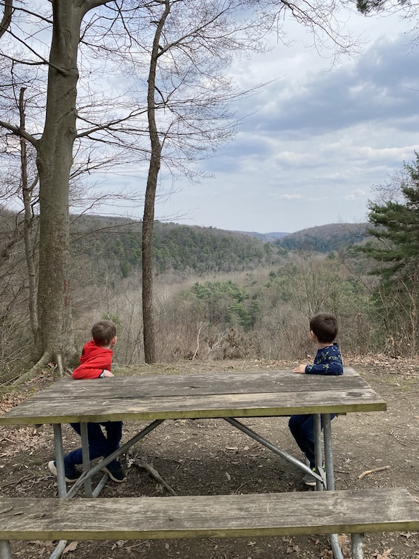 Vista Overlook at Mohican State Park.
