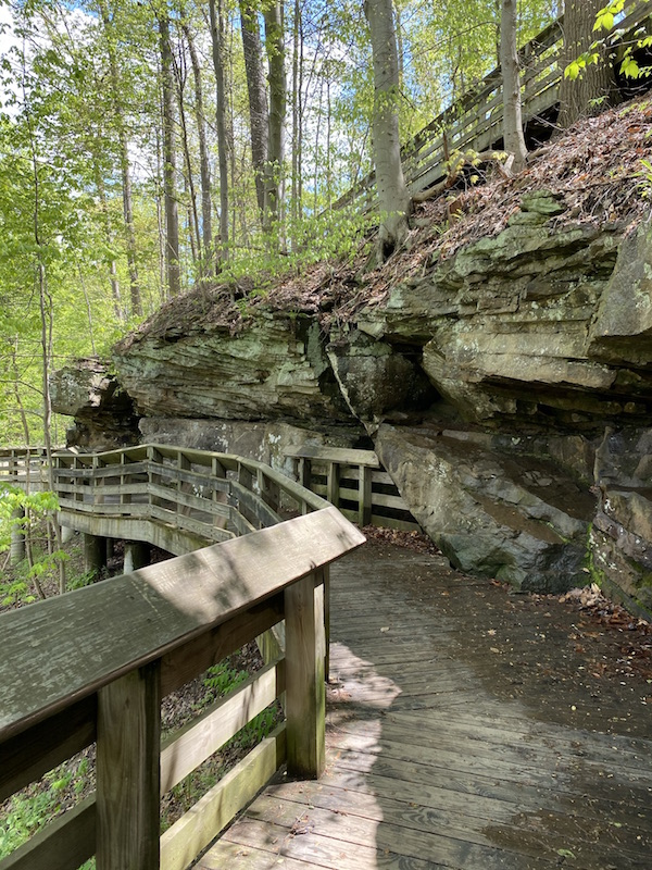 the boardwalk trail to the falls.